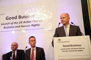 BHR action plan Hague & Cable