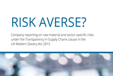 Risk Averse? Company reporting under the Modern Slavery Act